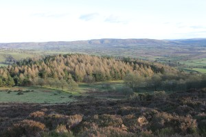 A view from the top of Heath Mynd in Shropshire